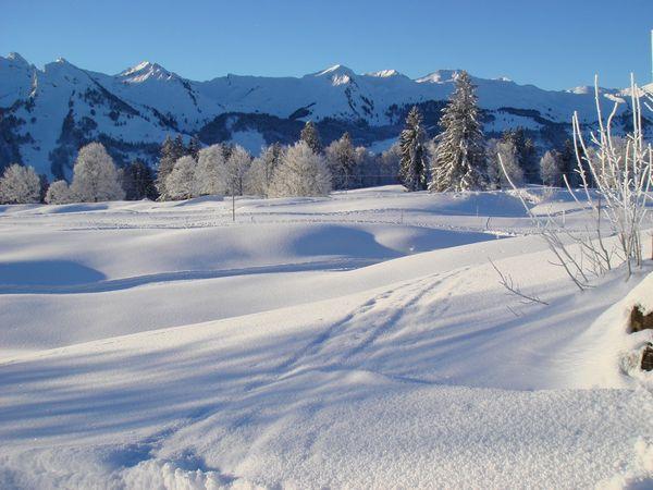 Langlaufloipe Oberberg - Trainingsloipe für ambitionierte Läufer