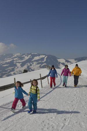 Winter walks in Sattel-Hochstuckli