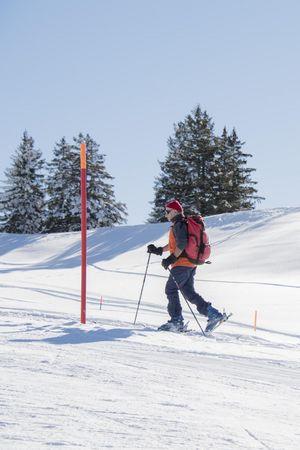 Winter walks in the Mythen Region