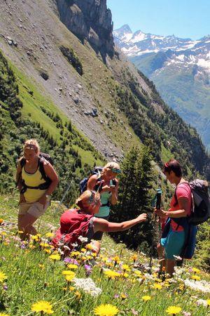 Wildkräuterevents in Berg und Tal mit Annamarie