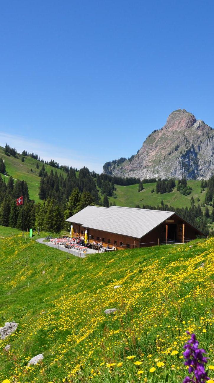 Alpwirtschaft Zwäcken am Schwyzer Panoramaweg