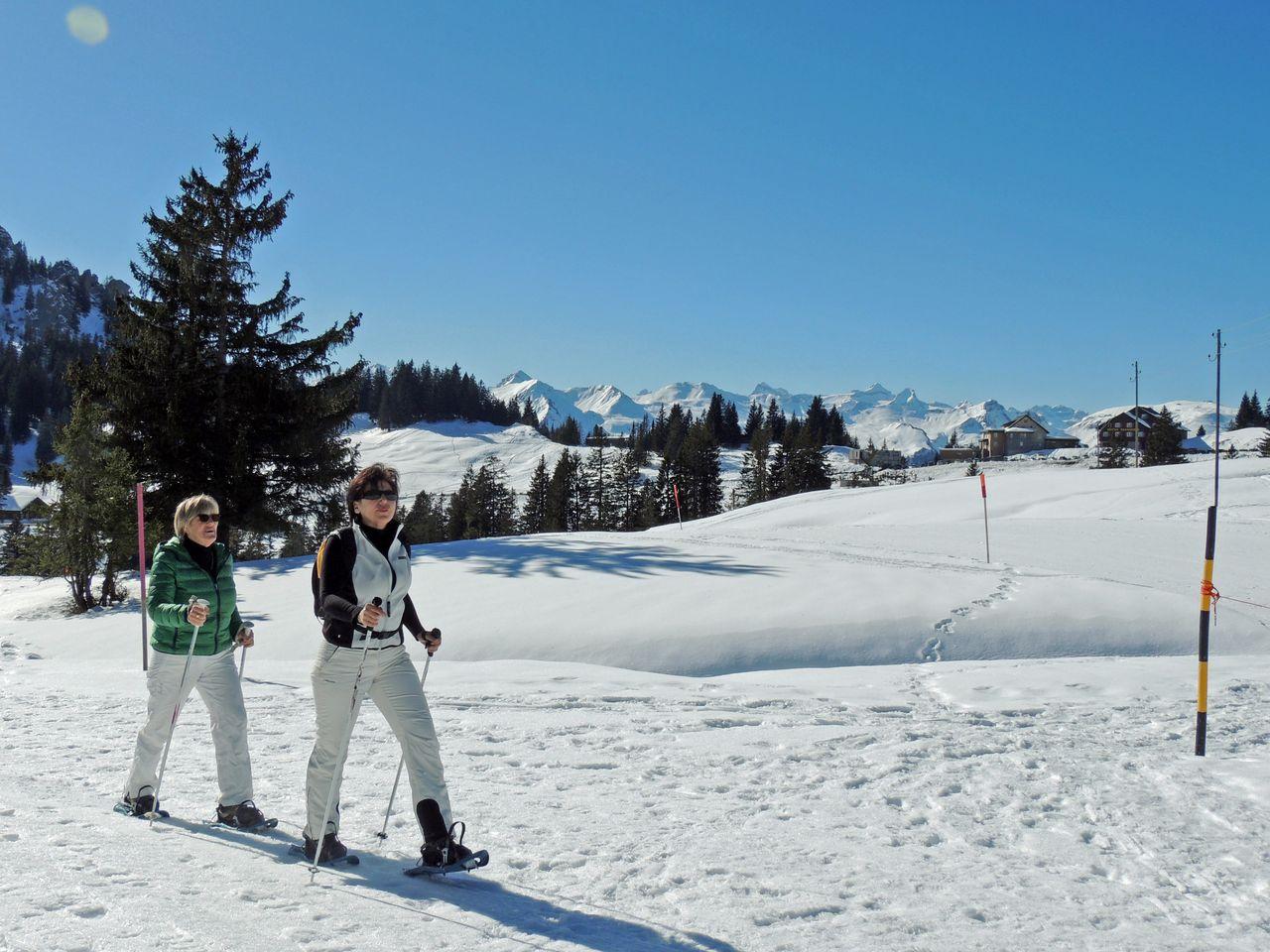 Schneeschuhtrail alter Schwyzerweg