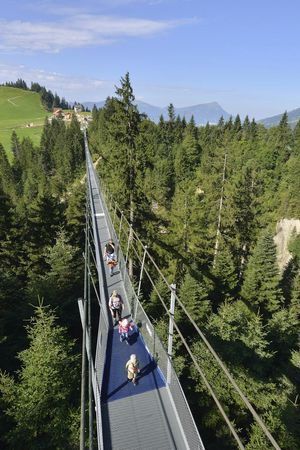 Pedestrian suspension bridge «Raiffeisen Skywalk»