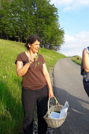"""Die Welt der Kräuter und Heilpflanzen auf dem """"Haslihof"""" entdecken mit Margrit"""