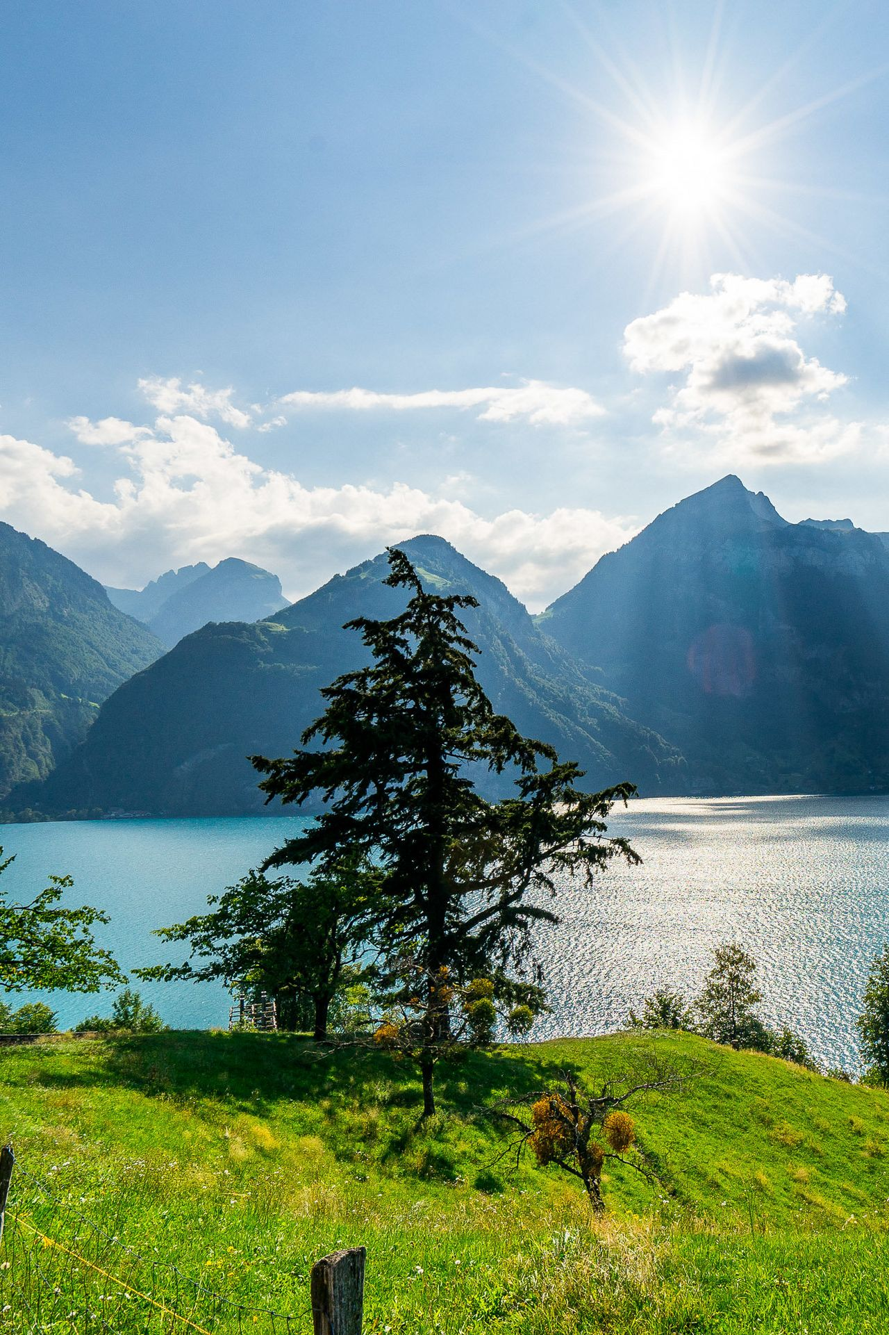 History of the Swiss Path