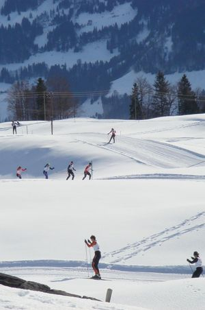 Oberberg cross-country ski trail