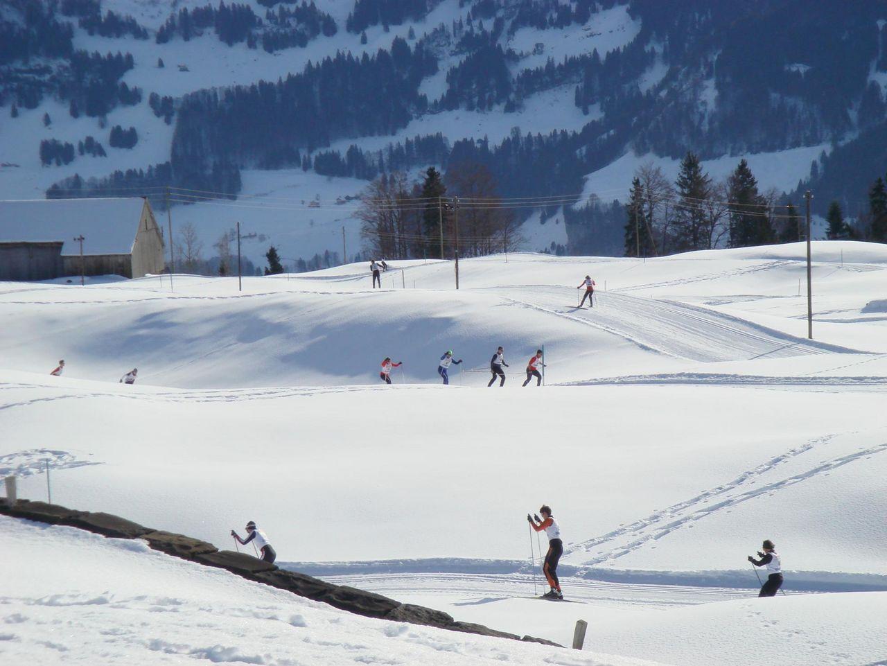 Oberberg cross-country ski trail