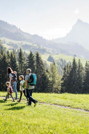 Family experience Sattel-Hochstuckli