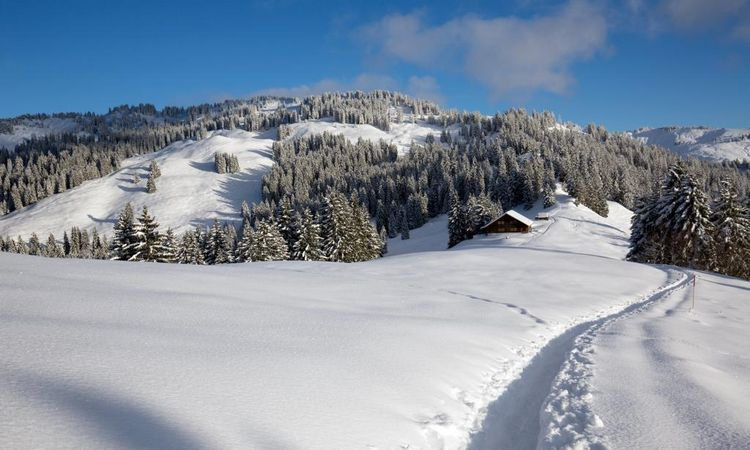 Take time out in the tranquil natural surroundings of Illgau