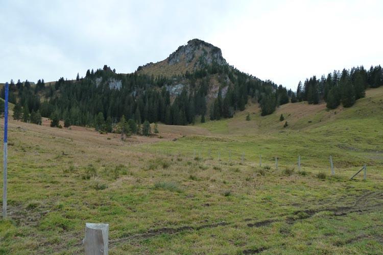 Geologische Wanderung Roggenstock